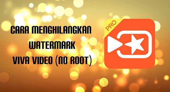 Cara Menghilangkan Watermark VivaVideo